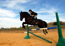 Jumping stallion. Young teenager and her friend black stallion: training of jumping Stock Photo
