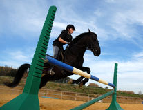 Jumping stallion and teen. Young teenager and her friend black stallion: training of jumping Stock Photo