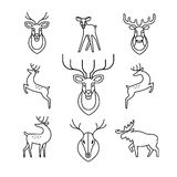 Jumping and standing deers, moose, antlers Stock Photos