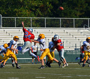 Jumping to Block a Pass stock photo
