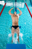 Jumping to swimming pool. Strong professional swimmer is jumping to swimming pool Royalty Free Stock Photo