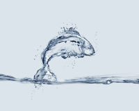 Jumping Water Fish. A fish made of water jumping into water Royalty Free Stock Images