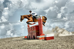 Jumps horse Royalty Free Stock Photos
