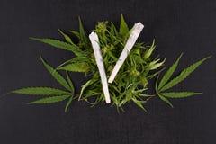 Junções e folhas da marijuana foto de stock royalty free