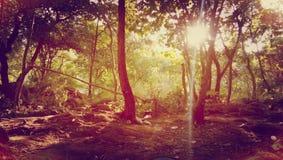 Junagadh de Girnar Foto de Stock Royalty Free