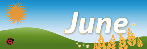 June. A june headline with flowers,ears of wheat and a ladybird on background.Others months in my portfolio.EPS file is available Stock Images