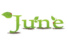 June Royalty Free Stock Image