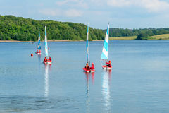 Children sailing boats on reservoir lake. Stock Image