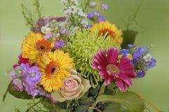 June bouquet of colors Stock Photos