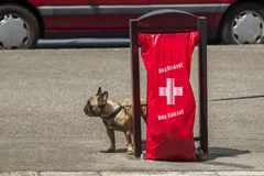 Geneva Switzerland, Hop Suisse for the football world cup. June 16, 2018 : during the football world cup all the bags of public garbage in the city encourages Stock Images