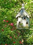June Garden. Birdhouse in rose garden Royalty Free Stock Photos
