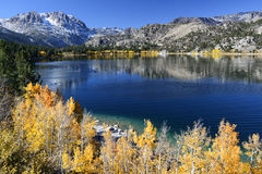 June Lake Fall Colors. Fall colors with the golden aspen trees at June Lake in the eastern Sierra Nevada mountains in California Royalty Free Stock Images