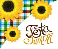 Festa junina poster with lettering and sunflowers. June party. Festa junina poster with hand drawn lettering, square pattern with countryside motives and Royalty Free Stock Photography