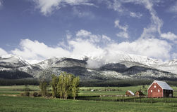 June Snow, Wallowa Mountains Royalty Free Stock Photos