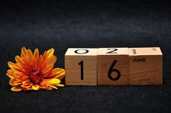 16 June on wooden blocks with an orange daisy. On a black background stock photo
