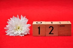 12 June on wooden blocks with a white daisy. On a red background royalty free stock photo