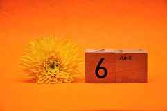 6 June on wooden blocks with a yellow daisy. On an orange background stock photos