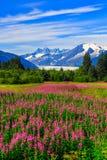 Аляска juneau Стоковые Фотографии RF