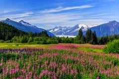 Juneau, Alaska Fotografie Stock
