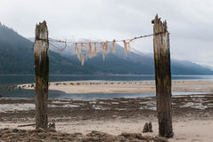 Juneau Royalty Free Stock Photo