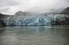 Juneau glaciär, Tracy Arm Royaltyfria Foton