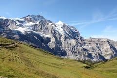 Junfrau,瑞士山麓小丘  库存图片