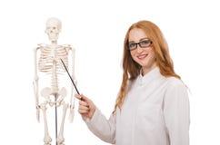 Junge Ärztin mit dem Skelett lokalisiert auf Stockfotos