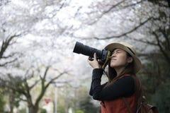 Junge asiatische Schönheit soll in, Japan zu reisen genießen lizenzfreie stockfotografie