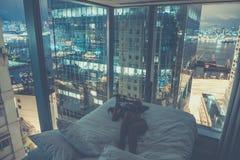 Junge attraktive Frau, die Selbstporträt im Bett am Abend macht Lizenzfreie Stockbilder