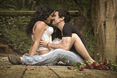 Junge attraktive Paare, die auf hölzerner Plattform im Wald flirten Lizenzfreie Stockfotos