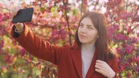 Junge attraktive rothaarige Frau macht ein selfie auf dem Hintergrund von Fr?hlingsblumen der Kirsche oder der Kirschbl?te-Bl?ten stock footage