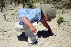 Junge auf dem Strand, der Kiesel aufhebt Stockfotografie