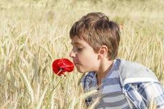 Junge auf dem Weizengebiet Stockbild