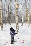 Junge auf den Skis, die Nistkasten betrachten Stockfoto