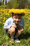 Junge auf einem Gebiet des Löwenzahns stockfotografie