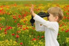 Junge auf einem Gebiet mit Ferngläsern Lizenzfreie Stockfotos