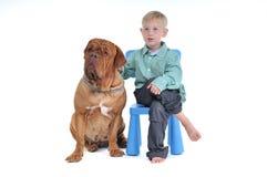 Junge auf Stuhl mit Hund Lizenzfreies Stockfoto