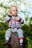 Junge auf Stumpf Stockfotografie