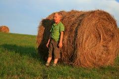 Junge auf Wiese Lizenzfreies Stockfoto