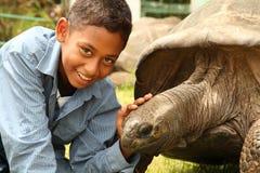 Junge besucht Jonathan die Schildkröte auf St. Helena Stockfoto