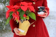 Junge blond-haarige Frau im roten Mantel, der nette SchneemannKaffeetasse und Poinsettiaanlage hält Stockbild