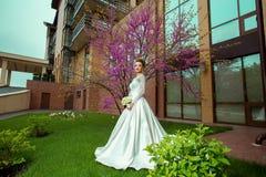 Junge blonde Braut des Zaubers, die mit sacura Baum aufwirft Stockfotografie