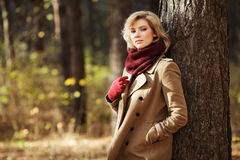 Junge blonde Frau im Herbstwald Stockbild