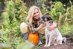 Junge blonde Frau mit dem Hund, der Kürbise, Herbstgarten erntet Stockfotografie