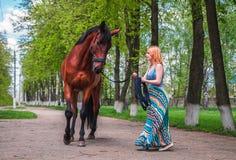Junge Blondine führt ein Pferd Stockfotografie