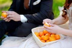Junge Braut und Bräutigam, die Tangerinen isst Stockbilder