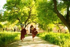 Junge buddhistische Anfängermönche, die äußeres Kloster laufen lassen lizenzfreie stockfotografie