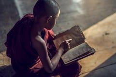 Junge buddhistische Anfängermönchlesung und -studie lizenzfreies stockfoto