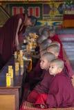Junge buddhistische Mönche stockfotografie
