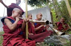 Junge buddhistische Mönche, die Hupen spielen Lizenzfreies Stockbild
